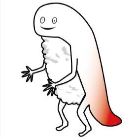 Hokkaido Mascot