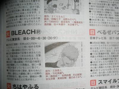 bleach ending